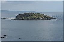 SX2551 : Looe: Looe Island by Martin Bodman