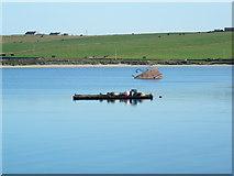 ND4798 : Raft and blockship in Weddell Sound. by sylvia duckworth