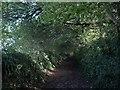 SX8765 : Ridge Lane by Derek Harper