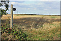 TA0246 : Bridleway to Watton by Peter Church