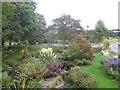 SM8722 : Domestic garden at Roch Bridge by Dr Duncan Pepper