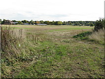 SJ7283 : Fields Off Bucklowhill Lane by Peter Whatley