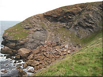 SW9781 : Rock fall below Scarnor Point by Philip Halling