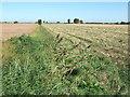 TF4817 : A dike off Marsh Road by Richard Humphrey