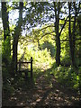 SW8548 : Footpath to Pencoose from Trehane Wood by Rod Allday
