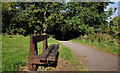 J3370 : The Lagan Meadows walk, Belfast (14) by Albert Bridge