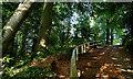 J3369 : The Lagan Meadows walk, Belfast (16) by Albert Bridge