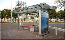 J3474 : Bus shelter and stop, Belfast (1) by Albert Bridge