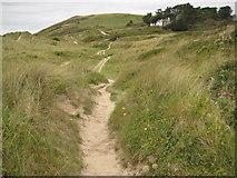 SW9276 : Sand dunes near Rock by Philip Halling