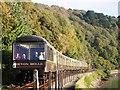 SX8852 : Devon Belle Steam Train approaching Kingswear Station by Tom Jolliffe