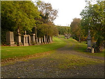 NS6065 : Glasgow: lower part of the Necropolis by Chris Downer