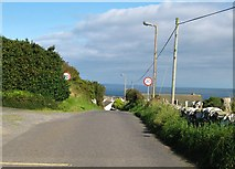 NX4736 : Entering the Isle of Whithorn by Ann Cook