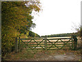 TG2605 : Gate into a field south of Blyth's Grove by Evelyn Simak