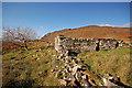 NG6116 : Ruins at Boreraig by John Allan