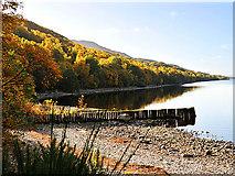 NN6557 : Eastern end of Loch Rannoch by Dr Richard Murray