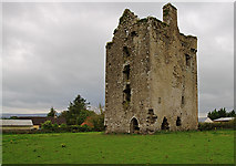 S0429 : Castles of Munster: Knockgraffon, Tipperary by Mike Searle