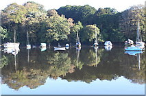 SW7834 : Early morning reflections on the Penryn River by Rod Allday