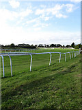 TQ3616 : Plumpton Racecourse by Simon Carey