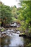 NY9038 : Waterfall Middlehope Burn by Paul Buckingham