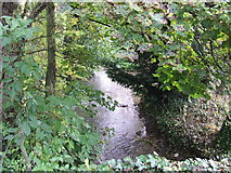 SP0812 : River Coln by norman hyett