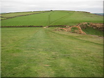SS2005 : The coast path on Efford Down by Philip Halling