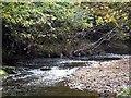 NZ1055 : River Derwent by Roger Smith