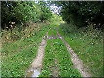 TL0568 : Sandye Lane by Shaun Ferguson