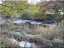 NS8107 : Rapids on the River Nith by Oliver Dixon