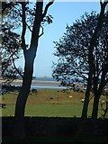 NU1341 : Lindisfarne Castle across Budle Bay and Ross Bank Sands by Barry Boxer