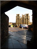 ST5545 : Wells: the cathedral from Brown's Gate by Chris Downer