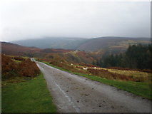 NC9410 : View along Glen Loth from above Lothbeg by Sarah McGuire