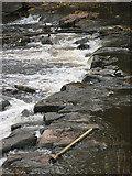 SO5012 : Monnow Weir by Pauline E