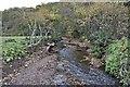 NZ6621 : Stream, Valley Gardens, Saltburn by Paul Buckingham