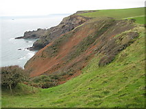 SX1597 : Coast above Cleave Strand by Philip Halling
