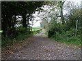 SD6379 : Bridleway by David Brown