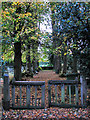 TL0898 : St John the Baptist's church - churchyard in the dusk by Evelyn Simak