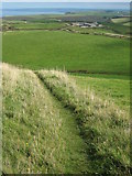 SX1394 : Coast path on High Cliff by Philip Halling