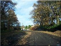 SE2853 : Harlow Pines by Matthew Blurton