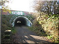 NZ2757 : Cycleway under the A1 by Vicki Deritis
