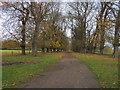 SP6918 : Tree Lined Avenue by Shaun Ferguson