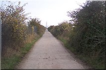 TQ6974 : Track in Shorne Marshes by David Anstiss