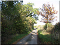 TG2600 : View north along Leavy Oak Lane by Evelyn Simak