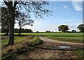 TG2600 : Dove Lane meets Leavy Oak Lane by Evelyn Simak