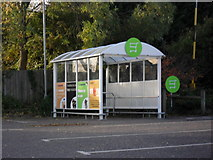 SP2806 : Supermarket trolley park by andrew auger