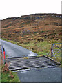 NG1950 : Cattle grid and a new fence by Richard Dorrell