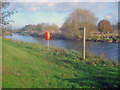 SK1813 : River Tame at Salter's Bridge by Trevor Rickard
