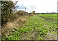 TM4194 : View south along a field margin by College Farm by Evelyn Simak