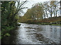"""NZ0814 : River Tees at  """"The Meeting of the Waters"""" by Chris Heaton"""