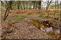 SU2705 : Warwickslade Cutting: bye bye footbridge by Peter Facey