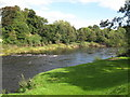 NZ0561 : The River Tyne at Bywell by Mike Quinn